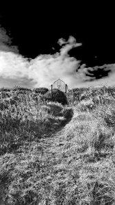 Groomsport+Donaghadee (5)