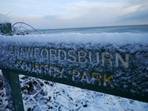 Crawfordsburn Park Snow (1)