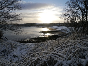 Crawfordsburn Park Snow (4)
