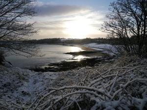 Crawfordsburn Park Snow (4)