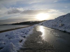 Crawfordsburn Park Snow (5)