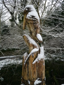 Crawfordsburn Park Snow (8)