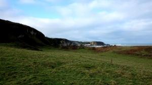 whitepark bay (11)
