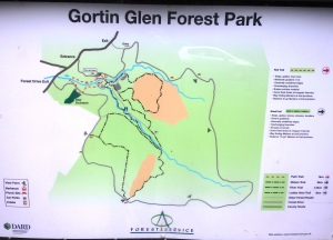 gortin forest lakes (1)