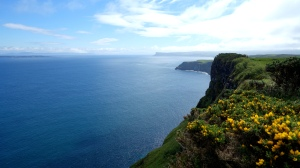 carrick-a-rede (13)
