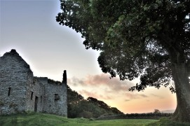 dundrum castle (10)